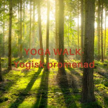 Yoga Walk – yogisk promenad